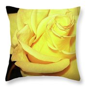 Yellow Rose For Friendship Throw Pillow