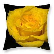 Yellow Rose  - Friendship,joy,good Health Throw Pillow