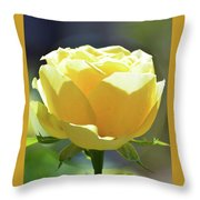 Yellow Rose In The Sun Throw Pillow