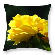 Yellow Rose Sunlit Rose Garden Landscape Art Baslee Troutman  Throw Pillow