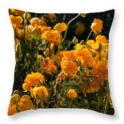 Yellow Rules The Field Throw Pillow