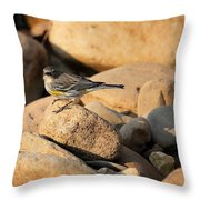 Yellow Rumped Warbler On River Rocks Throw Pillow