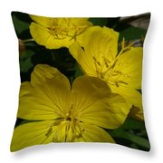 Yellow  Shade Throw Pillow