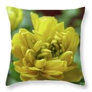 Yellow Shy Throw Pillow