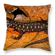 Yellow Spotted Tropical Night Lizard Throw Pillow