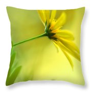 Yellow Spring Daisy Abstract By Kaye Menner Throw Pillow