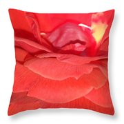 Yellow-striped Red Rose Throw Pillow