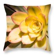 Yellow Succulent Throw Pillow
