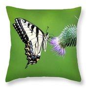 Yellow Swallow Tail 2 Throw Pillow