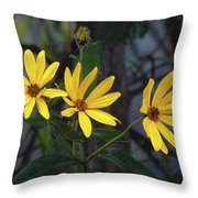 Yellow Trined Throw Pillow