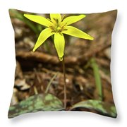 Yellow Trout Lily 1 Throw Pillow