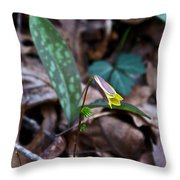 Yellow Trout Lily 2 Throw Pillow