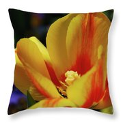 Yellow Tulip Blossom Streaked  With Red In The Spring Throw Pillow