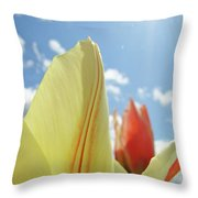 Yellow Tulip Flower Art Prints Spring Blue Sky Clouds Baslee Troutman Throw Pillow