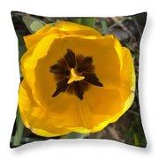 Yellow Tulip Head     Spring   Indiana Throw Pillow