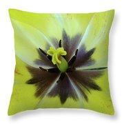 Yellow Tulip Macro Spring Floral Garden Baslee Troutman Throw Pillow