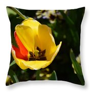 Yellow Tulip With Red Stripe Throw Pillow