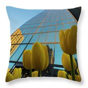 Yellow Tulips Looking Up At The Hancock Boston Ma Throw Pillow