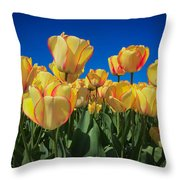 Yellow Tulips With An Orange Flare Throw Pillow