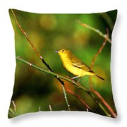 Yellow Warbler Galapagos Islands Throw Pillow