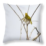 Yellow Warbler In Flight Throw Pillow