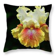 Yellow White And Burgundy Iris Throw Pillow