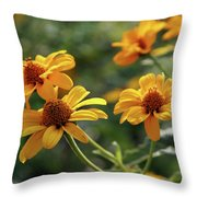 Yellow Wildflowers 3680 H_2 Throw Pillow