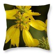 Yellow Wingstem Throw Pillow