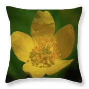 Yellow Wood Anemone 1 Throw Pillow