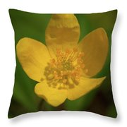 Yellow Wood Anemone 2 Throw Pillow