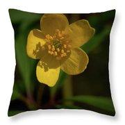 Yellow Wood Anemone 3 Throw Pillow