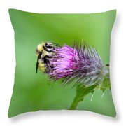 Yellowhead Bumblebee Throw Pillow