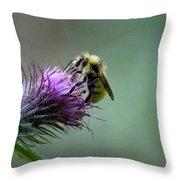 Yellowhead Bumblebee Two Throw Pillow