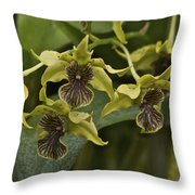 Yellowish Orchids Throw Pillow