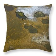 Yellowstone #1 Throw Pillow