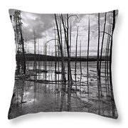 Yellowstone 145 Throw Pillow
