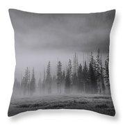 Yellowstone 148 Throw Pillow