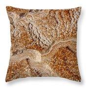 Yellowstone 2 Throw Pillow