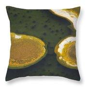 Yellowstone #2 Throw Pillow