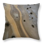Yellowstone #3 Throw Pillow