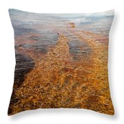 Yellowstone Colors #7 Throw Pillow