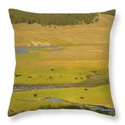 Yellowstone Bison 2 Throw Pillow