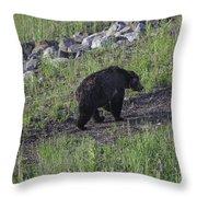 Yellowstone Black Bear Throw Pillow