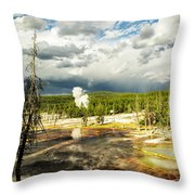 Yellowstone Colors #3 Throw Pillow