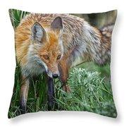 Yellowstone Fox Throw Pillow