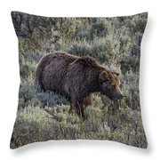 Yellowstone Grizzly Throw Pillow
