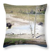 Yellowstone Park Bisons In August Throw Pillow