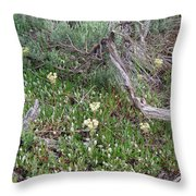 Yellowstone Renewal From Fire Throw Pillow