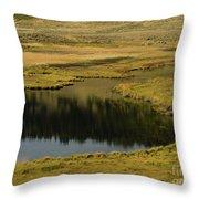 Yellowstone River Pond Throw Pillow