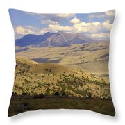 Yellowstone View Throw Pillow